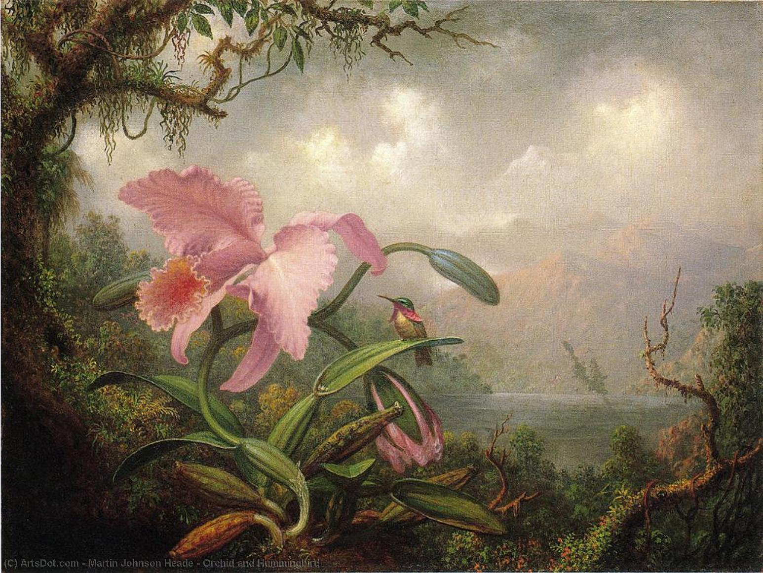Орхидея и колибри, 1885 по Martin Johnson Heade (1819-1904, United States) | Репродукции Произведений Искусства Martin Johnson Heade | ArtsDot.com