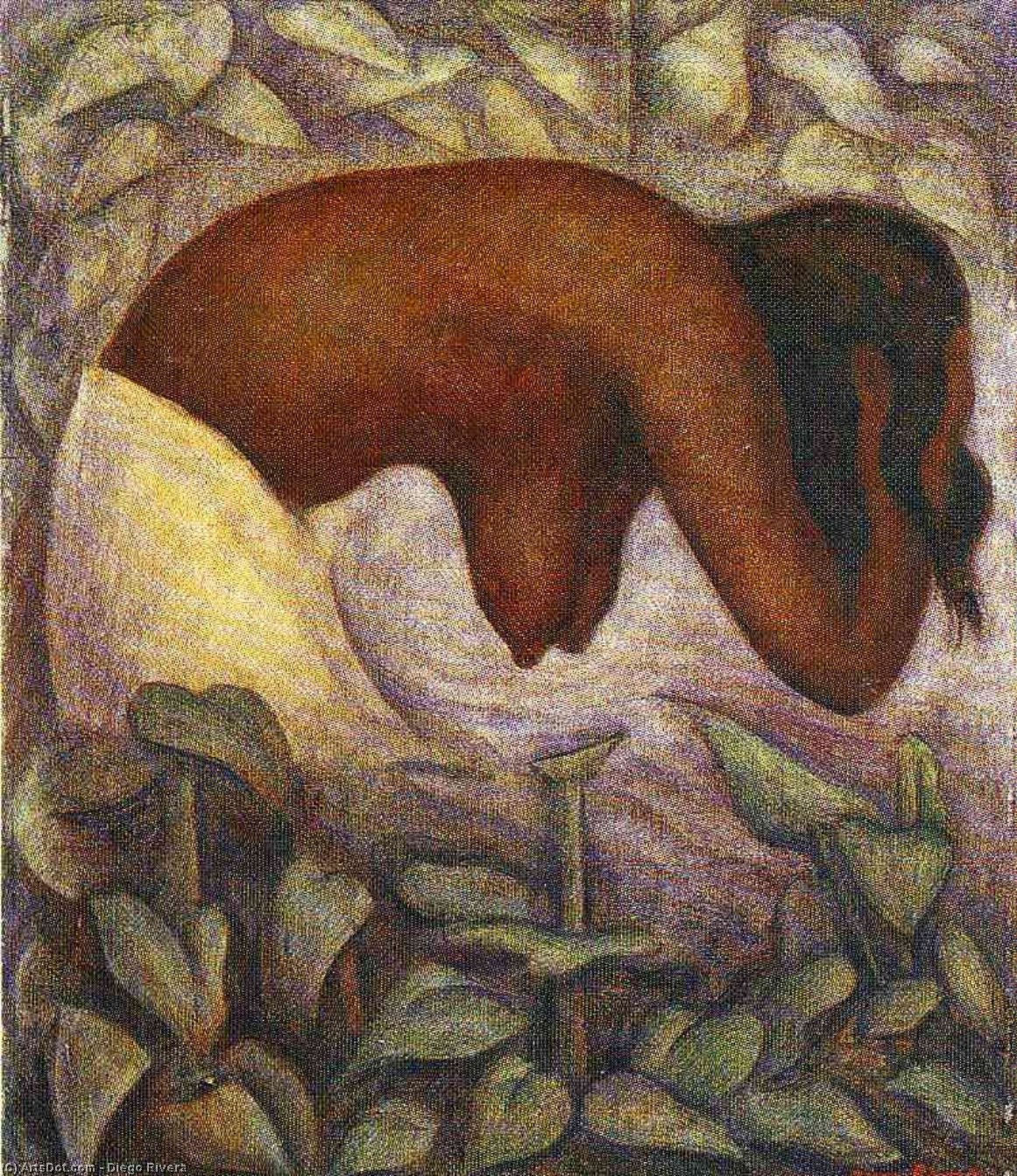 Купальщица Теуантепек, холст, масло по Diego Rivera (1886-1957, Mexico)