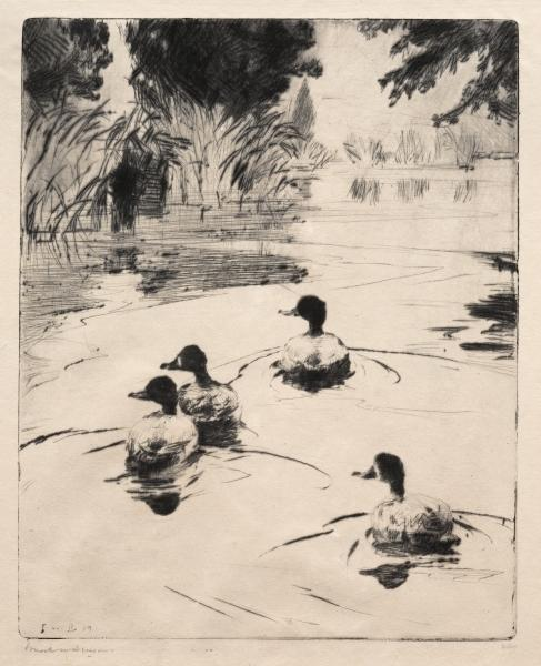Broadbills по Frank Weston Benson (1862-1951, United States)
