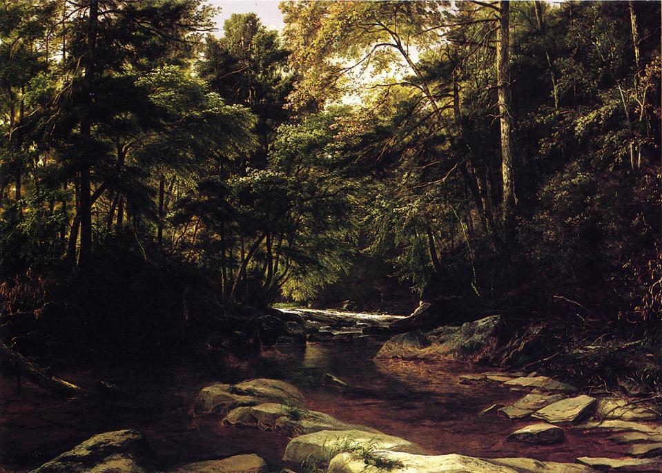 На Conemaugh, 1866 по George Hetzel (1826-1899, France)