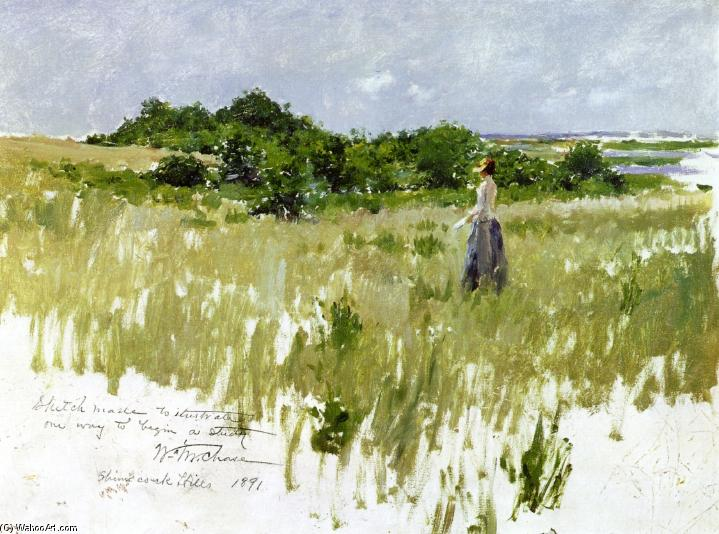 shinnecock хиллз ( известно также, как Вид Шиннекок ), Масло на панели по William Merritt Chase (1849-1916, United States)