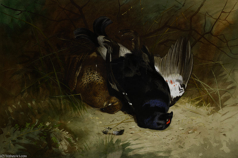 Натюрморт из пары Blackgame по Archibald Thorburn (1860-1935, United Kingdom)
