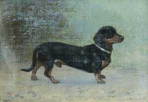 Thomas Hall - 'Tommy' , Dachsund